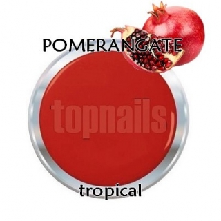 topnails - barevný UV gel TROPICAL POMERANGATE 5g